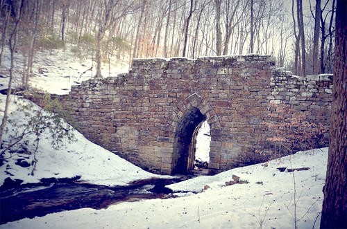 Poinsett Bridge Heritage Preserve-014