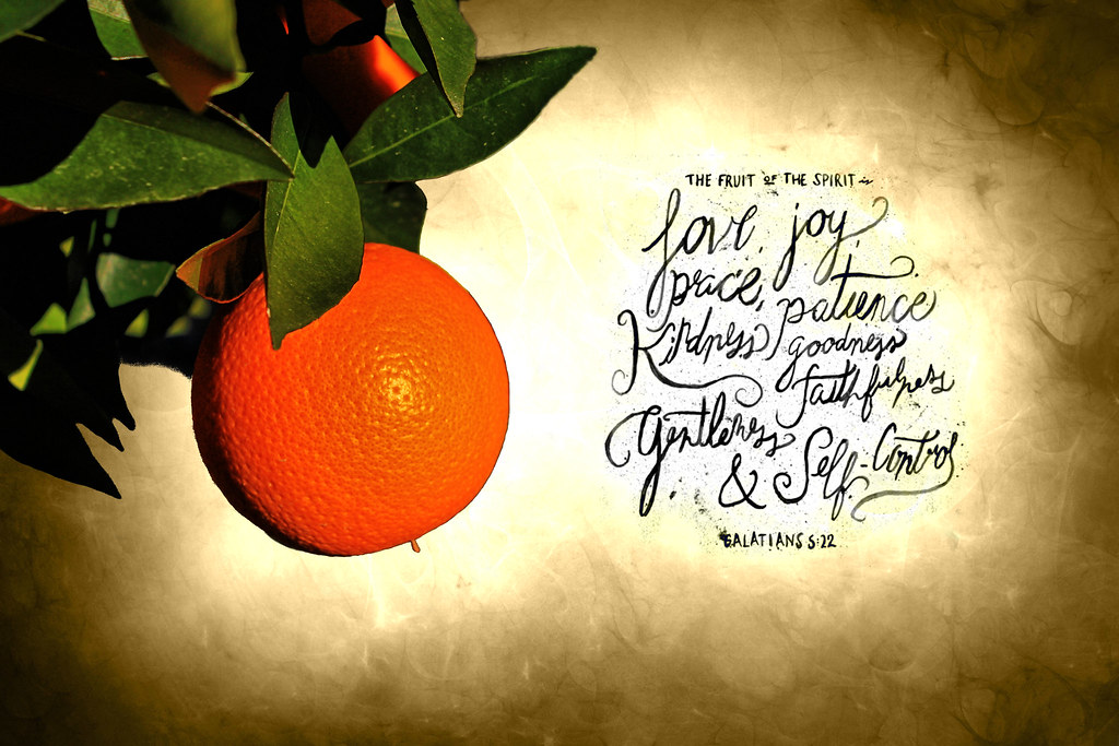 Jesus Wallpaper Hd The Fruit Of The Spirit My First Photo Ever Taking Out