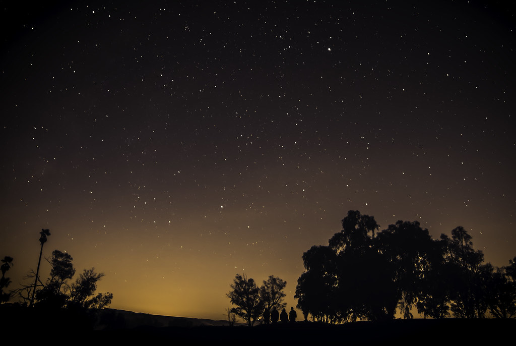 Nightime Wanderers  Heres a night time photo I edited