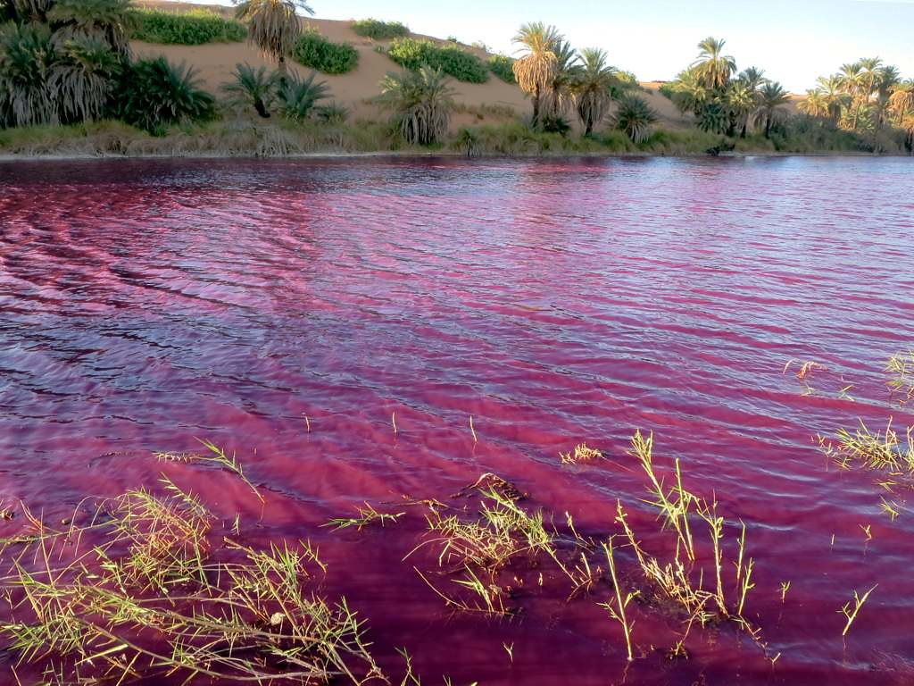Red Waters of Lake Motro  The bright red color of the