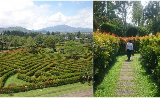 33 Extraordinary Things To Do In Bogor Puncak You Never