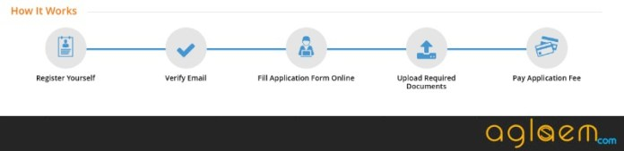HITSEEE 2019 Application Form