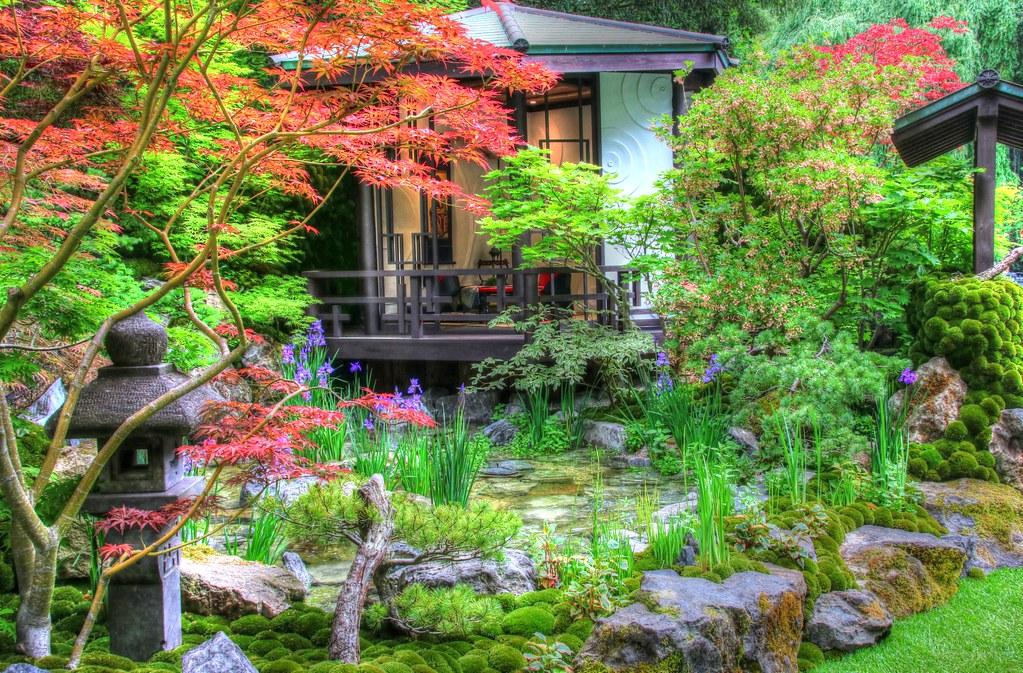 Best Artisan Garden RHS Chelsea Flower Show  Japanese styl  Flickr