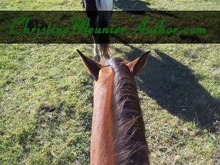 ChristineMeunierAuthor.com - the Online Home of Educational and Entertaining Horse Books