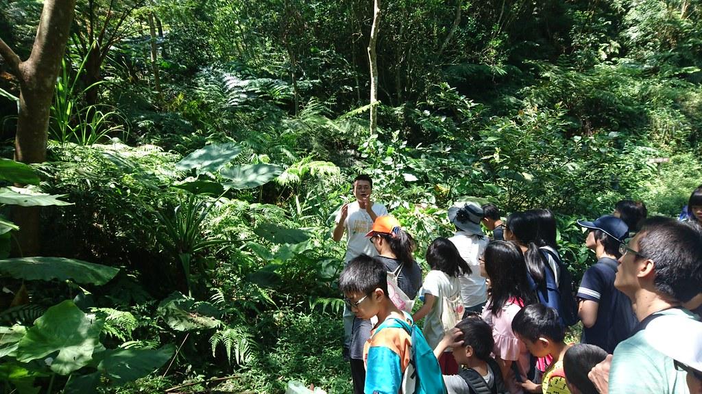 這是你與我們一起創造的2018年 - 臺灣環境資訊協會