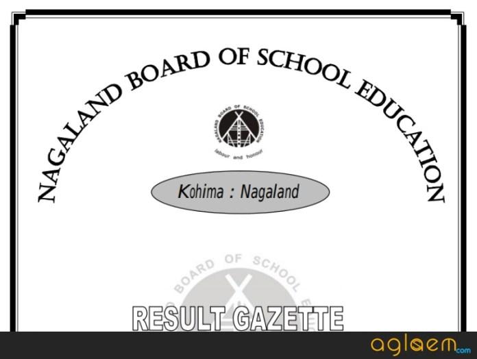 NBSE HSLC Result 2019