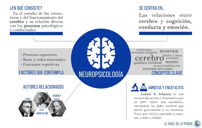 Paradigmas Psicológicos #6: Neuropsicología