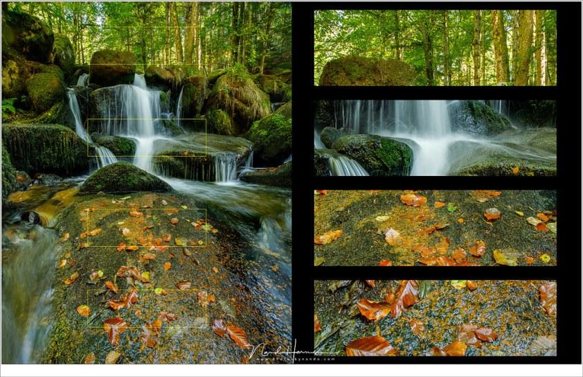 Het resultaat Focusstacking is een foto die op alle plekken scherp is, ondanks dat er slechts f/5,6 gebruikt is.