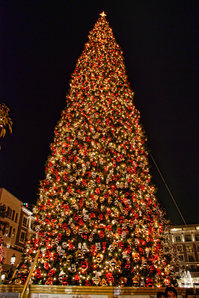Americana Christmas Tree Glendale California  100foot fi  Flickr