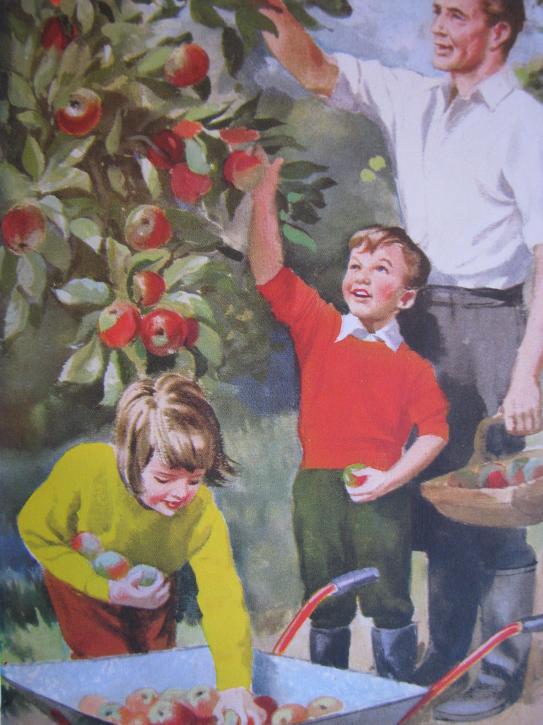 We Are Helping To Pick The Apples Illustrations Taken