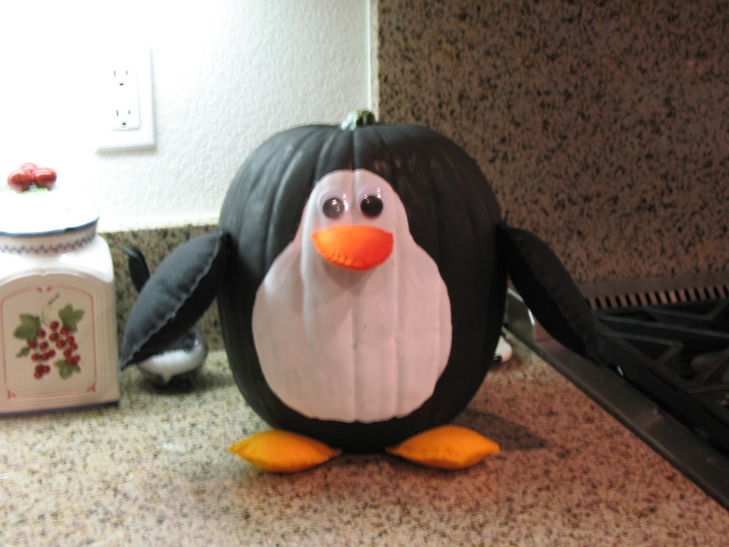 Penguin Pumpkin  My daughter is a penguin nut so I used