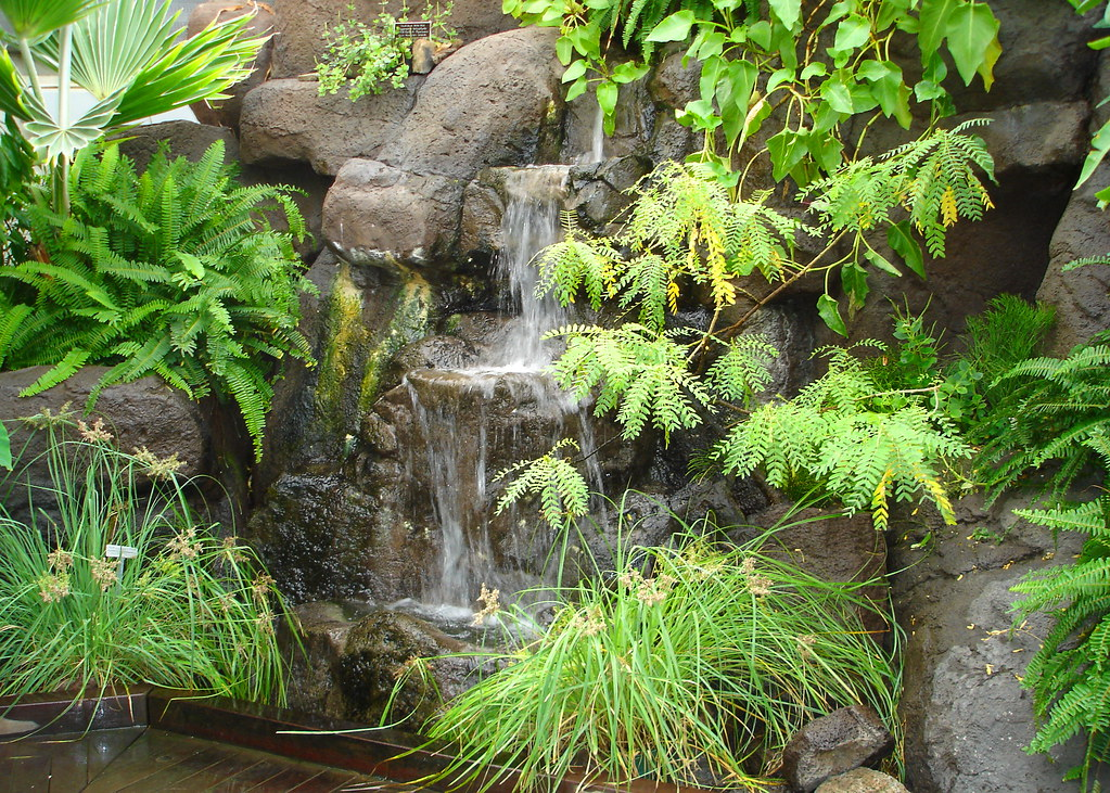 Tropical Rainforest Scenery Water Falling Down Rocks Among Flickr