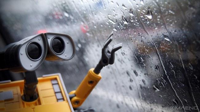Seeing Robot