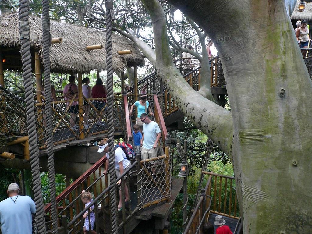 Rope Bridge in Swiss Family Robinson Tree House Magic King