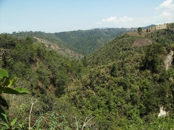Central American Mountains and Forest I took this photo