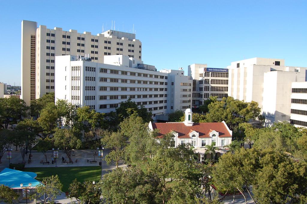 Jackson Memorial Hospital University of Miami Miller Scho ...