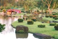 Japanese Garden - Singapore   This enchanting formal ...