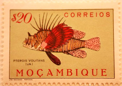 Mozambique Stamp Pterois Volitans  More great stamps put o  Flickr