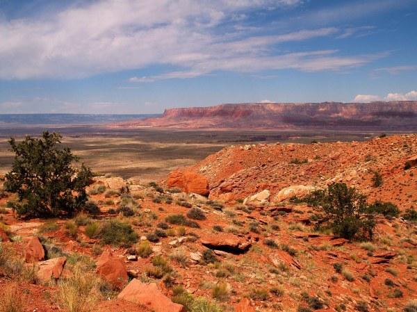 arizona landscape explore