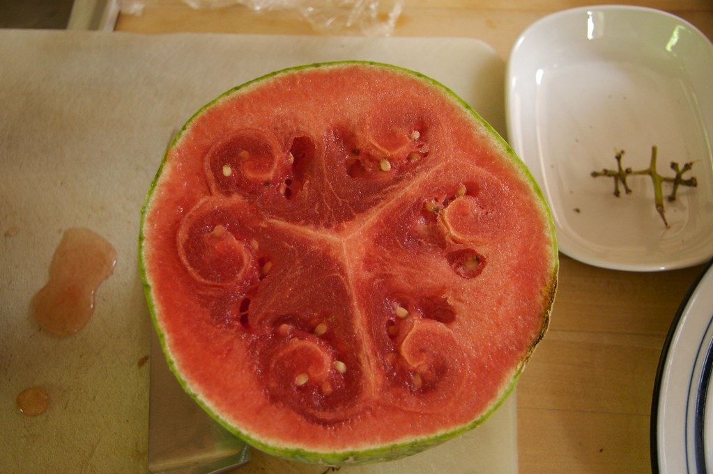 The Unusually Shaped Watermelon It Was Overripe But Hadn Flickr