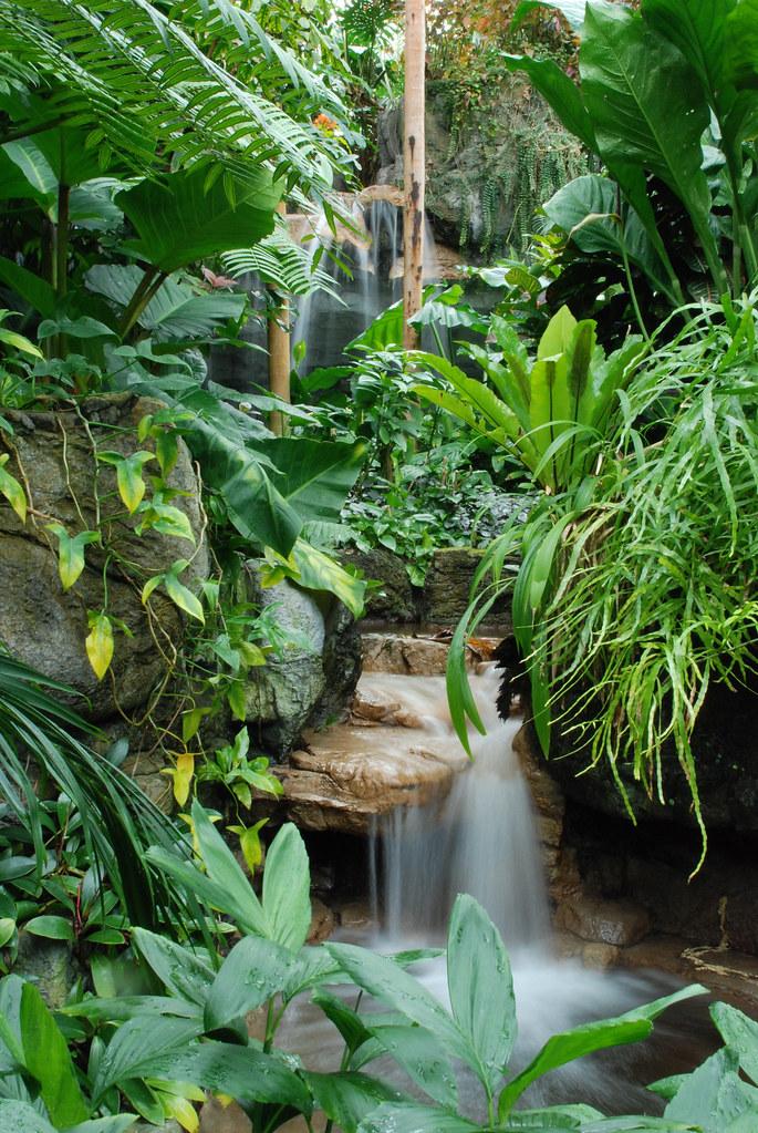 Climatron Waterfall  Photo credit Jennifer Meinhardt