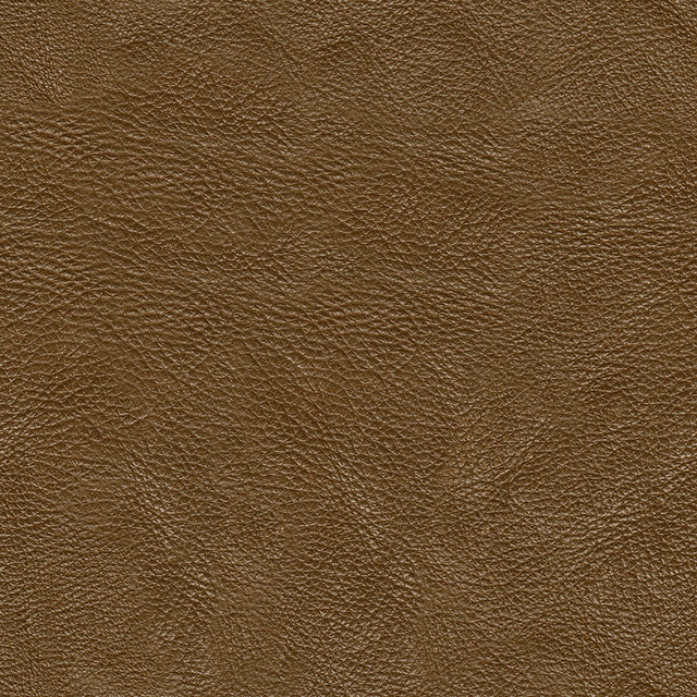 Webtreats Light Brown Leather Pattern  Free combo pack of