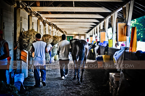 In the Stables at the Backside of Churchill Downs in Louis