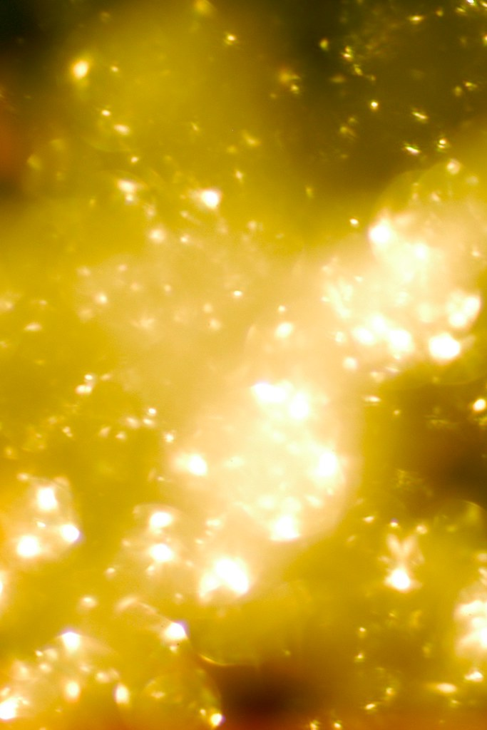Create Animated Wallpaper Gold Sparkle Texture This Is Free To Use As A Texture Or