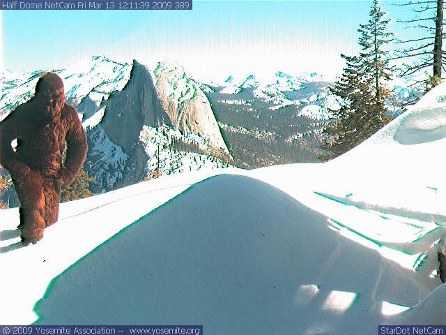 Half Dome Web Cam 31309  Steve  Flickr