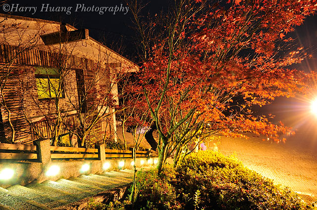 4_D308526-Taipingshan Villa. Yilan. Taiwan 太平山莊-階梯-樓梯-太平山森… | Flickr