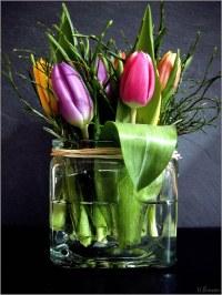 Tulpen im Glas | Tulpen im Frhling 2009 | h.bresser | Flickr
