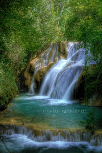 Lacandona Jungle Chiapas Mxico  wwwabaimagencom Profess  Flickr