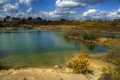 Ham Common Hamworthy Lake A Disused Clay Quarry A