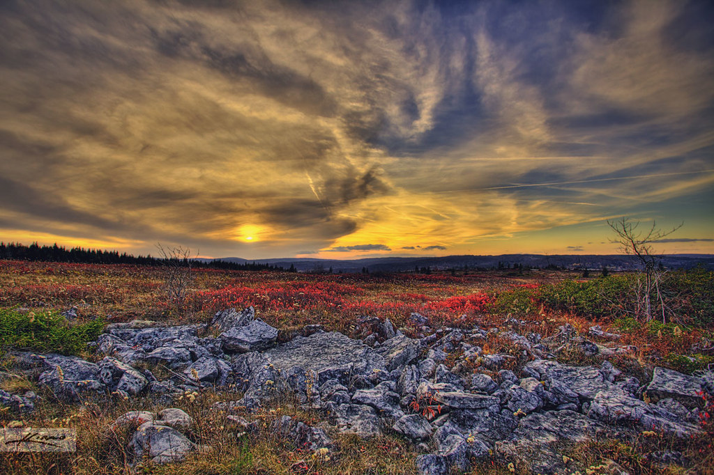 Fall High Definition Wallpapers Dolly Sods Wilderness West Virginia Captainkimo Com