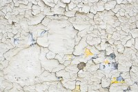 more cracked paint | liz west | Flickr