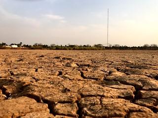 arid landscape near ziguinchor in casamance