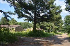 016 Horton Gardens