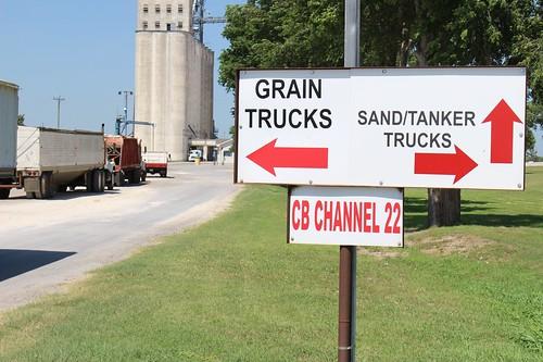 Z Crew: Grain or sand