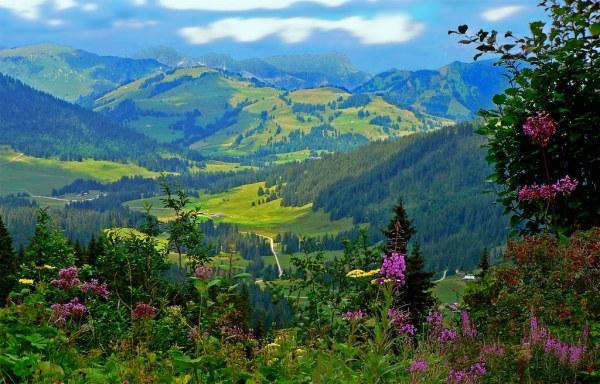 switzerland - landscape lioson