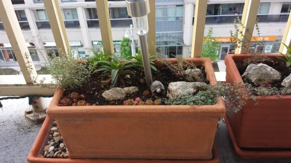 container rock garden iv leftmost
