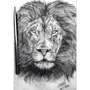 #lion #animal #hair #forest #beauty