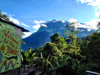 jungle jack backpackers in mount kinabalu