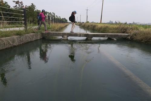 【散步水圳邊6】嘉南大圳善化支線2:重新整理好的自行車道總是缺乏土味(12.6 ys)