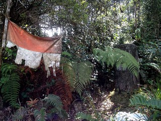 old indonesian flag on bukit manja highest point