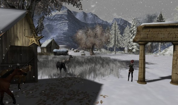 Snow, Horses and Woman