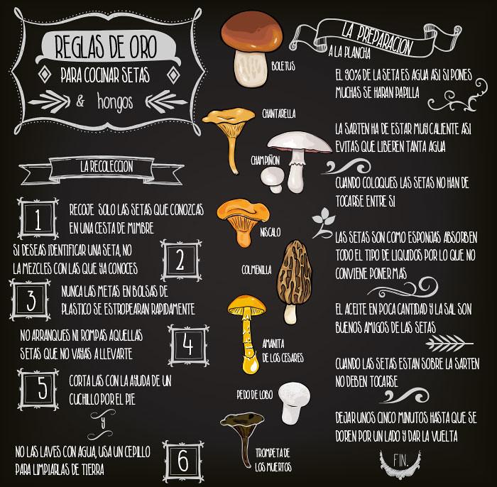 Reglas de oro para cocinar setas