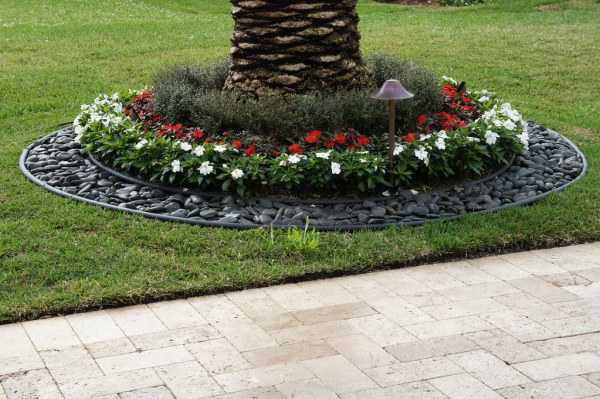 flowers & stones palm tree