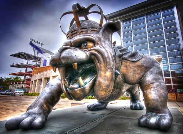 JMU Duke Dog Flickr Photo Sharing!