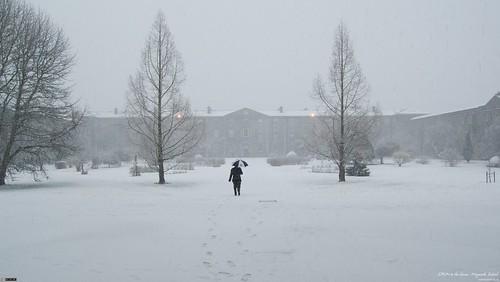 Snow in SPCM (16:9 Wallpaper)
