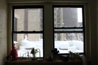 New York City apartment window during the winter snow bliz